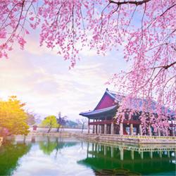 Korea-ISPOR-AP2020